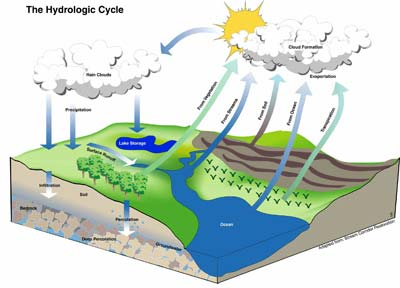 hydrologic_cycle